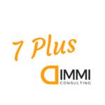 7 Plus dimmi consulting